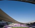 stadion hazza bin zayid
