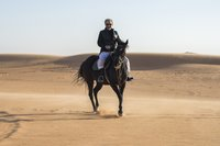 Liburan Pangeran Al-Walid